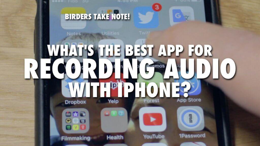 Best iPhone app for birding