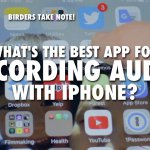 Best iPhone app for birding